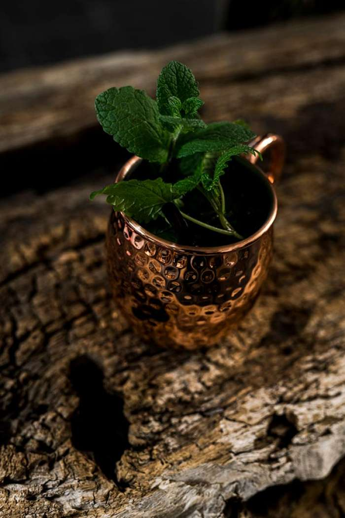 Mint cocktail presented in a copper cup